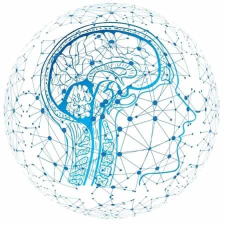 Mentale fitheid speelt een cruciale rol in organisaties | EverDevelop
